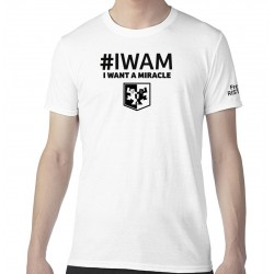 TS_Collector - IWAM-MAXX